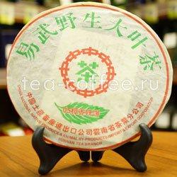 Чай Камфора ладана (шен) 357 гр