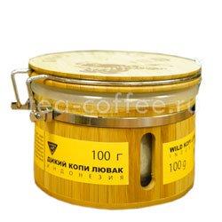 Кофе Kopi Luwak в зернах Дикий (Подарочный) 100 гр